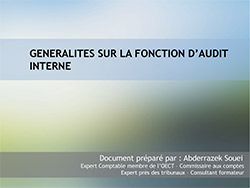 Les conditions de réussite et le manuel des procédures de l'audit interne
