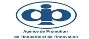 Logo APII
